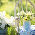 妊娠中は家庭菜園やガーデニングをしちゃダメ?妊婦と胎児への影響と4つの注意点