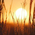 妊娠中は暑がりになる?妊婦の暑がりの理由と3つの汗対策