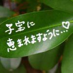 さるぼぼ7つの特徴と口コミ~岐阜県飛騨高山発!子宝祈願グッズの魅力