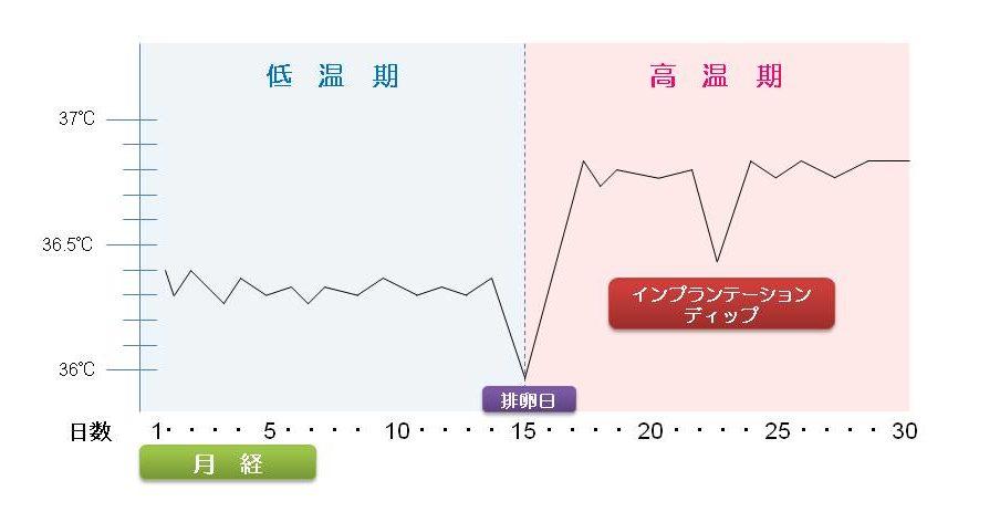の した 時 高温 基礎 体温 期 妊娠