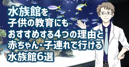 水族館を子供の教育にもおすすめする4つの理由と赤ちゃん・子連れで行ける水族館6選